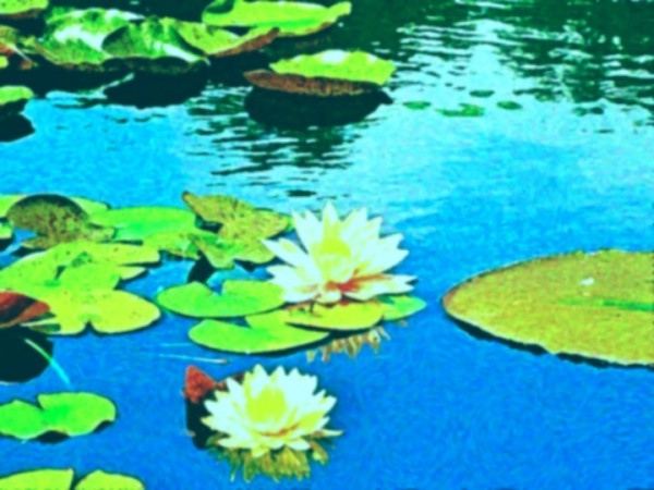 A Monet-style photo created using BeFunky's impressionist filter.