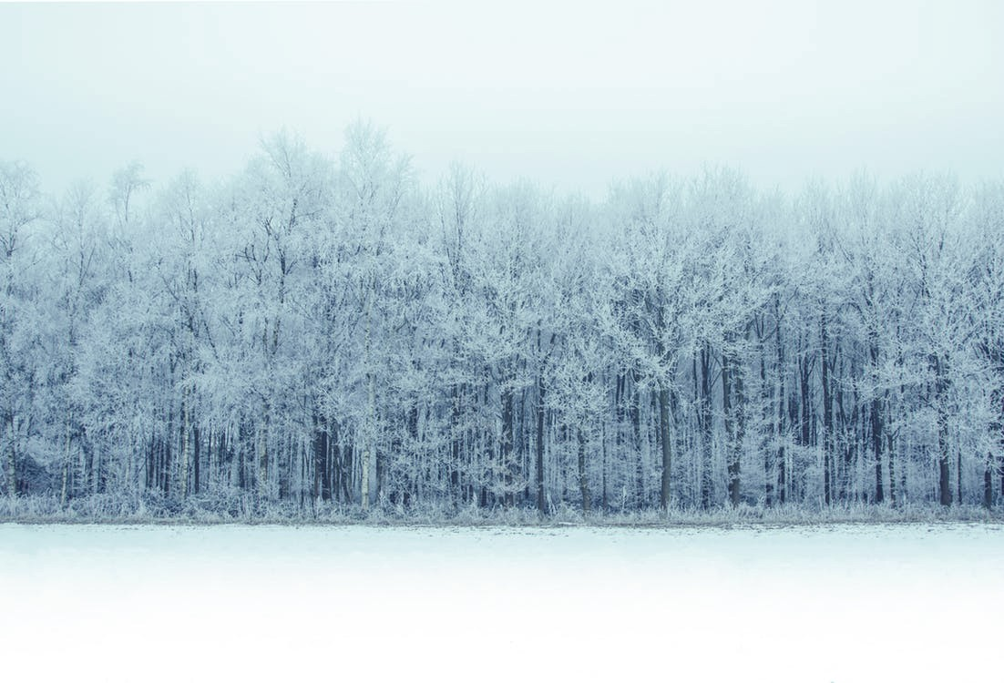 how to edit photos of snow in BeFunky