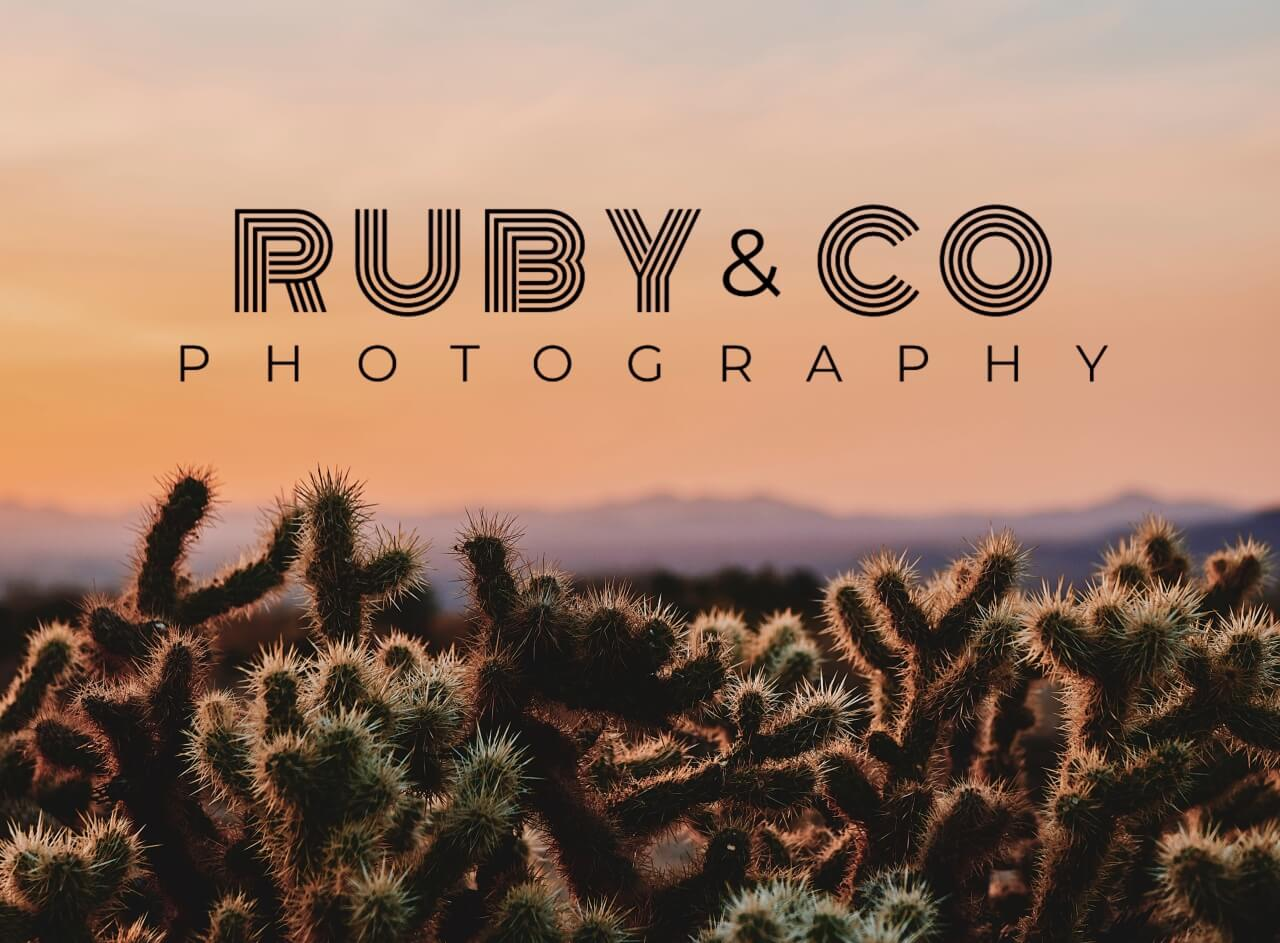 how to put logo on a photo in BeFunky